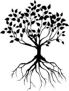 tree801